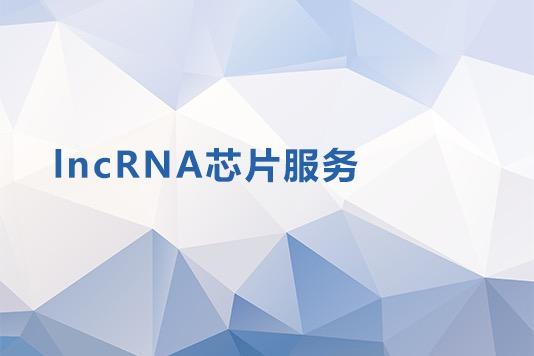 LNCRNA芯片服务