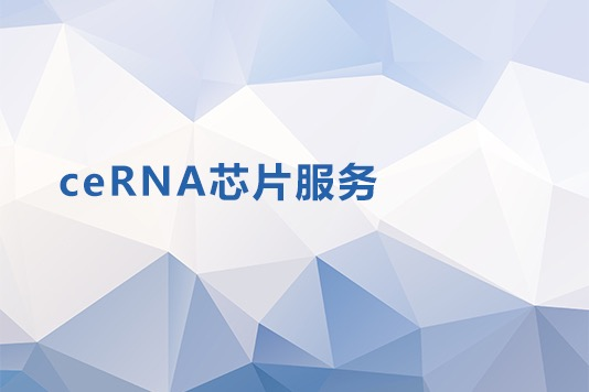 CERNA芯片服务