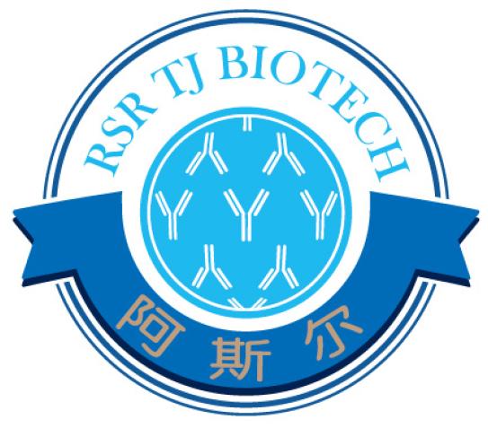 谷氨酸脱羧酶人单克隆抗体 5B3