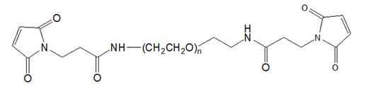 MAL-PEG-MAL 双马来酰亚胺聚乙二醇 修饰PEG