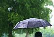 总有一款适合您,新款定制雨伞开启预售!