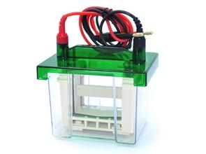 P3两块胶电泳仪(槽+芯)