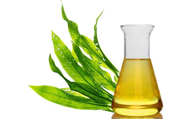 二十碳五烯酸 EPA
