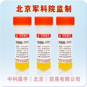 溶菌酶-FITC,异硫氰酸荧光素标记溶菌酶