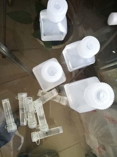 同位素核酸蛋白结合反应试剂盒