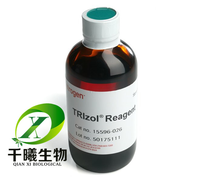 TRIzol® Reagent细胞裂解液
