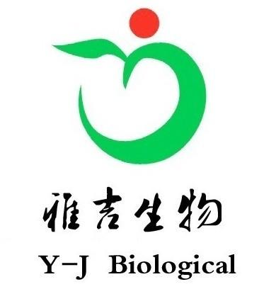 纤维素酶(CL)/羧甲基纤维素酶分光光度法测试盒