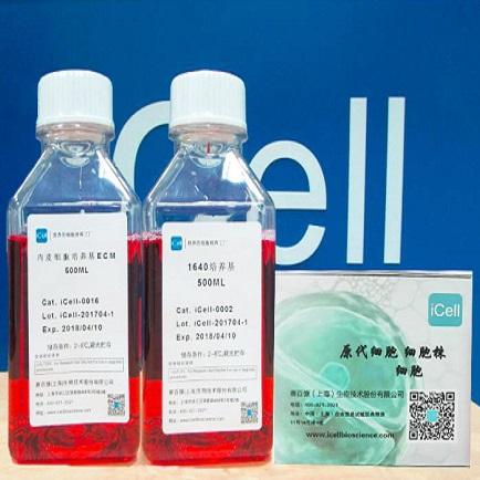 人造血干细胞