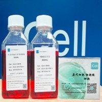人脂肪干细胞/免疫荧光鉴定/赛百慷(iCell)
