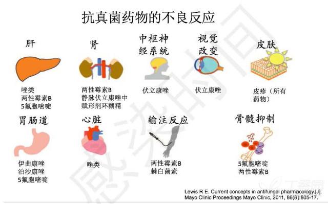 真菌药物学习笔记的副本(1)_页面_12.jpg