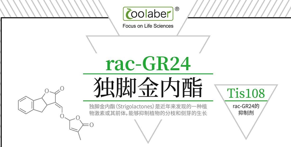 rac-GR24/独脚金内酯/76974-79-3