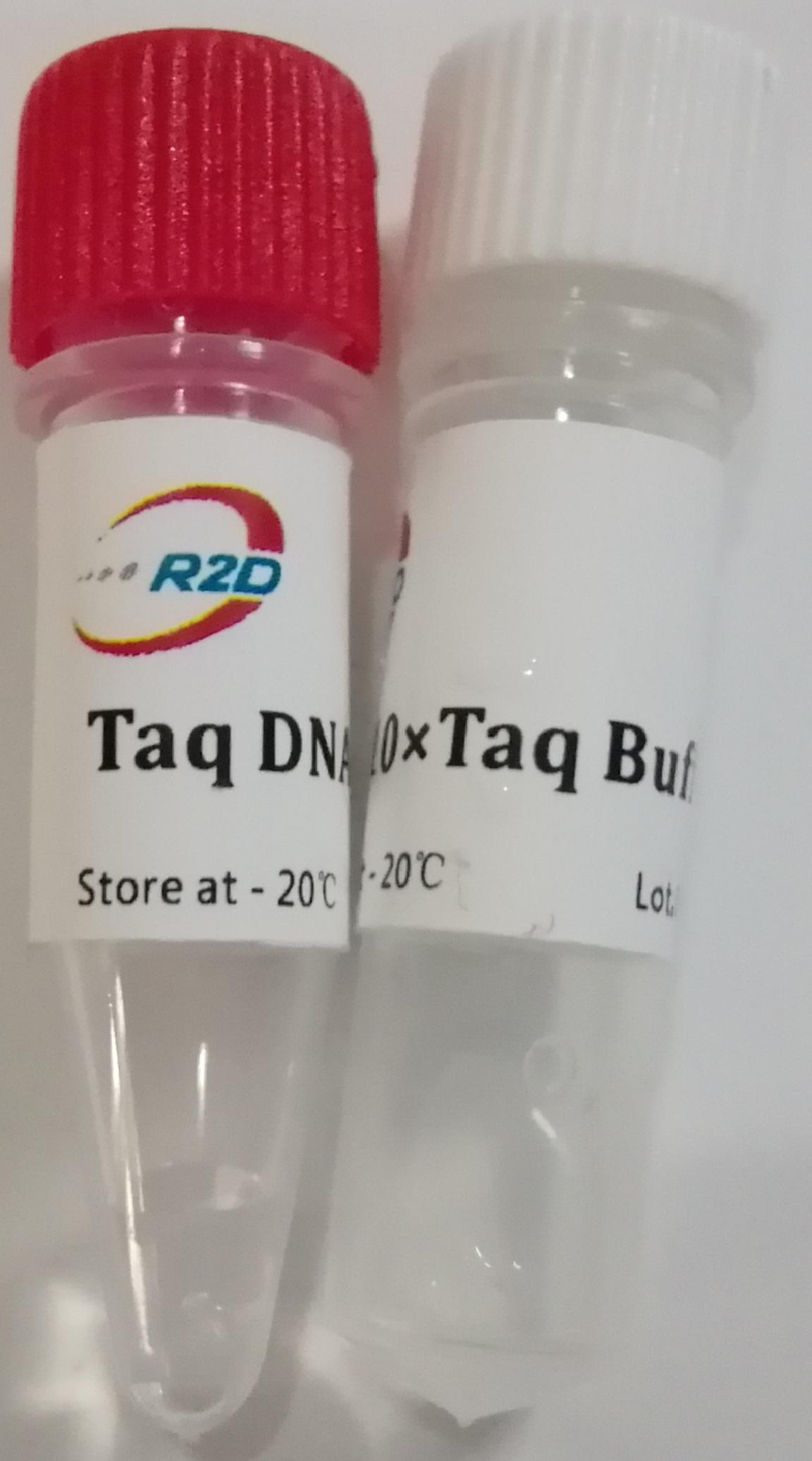 常规PCR: 2× Taq PCR Master Mix(Dye +)
