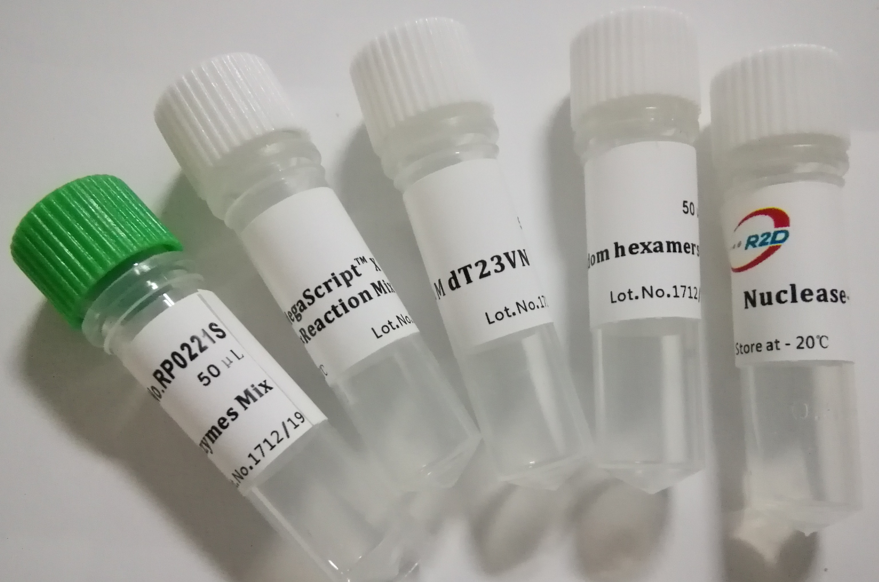 最强cDNA合成:MegaScriptTM Y First Strand cDNA Synthesis Kit