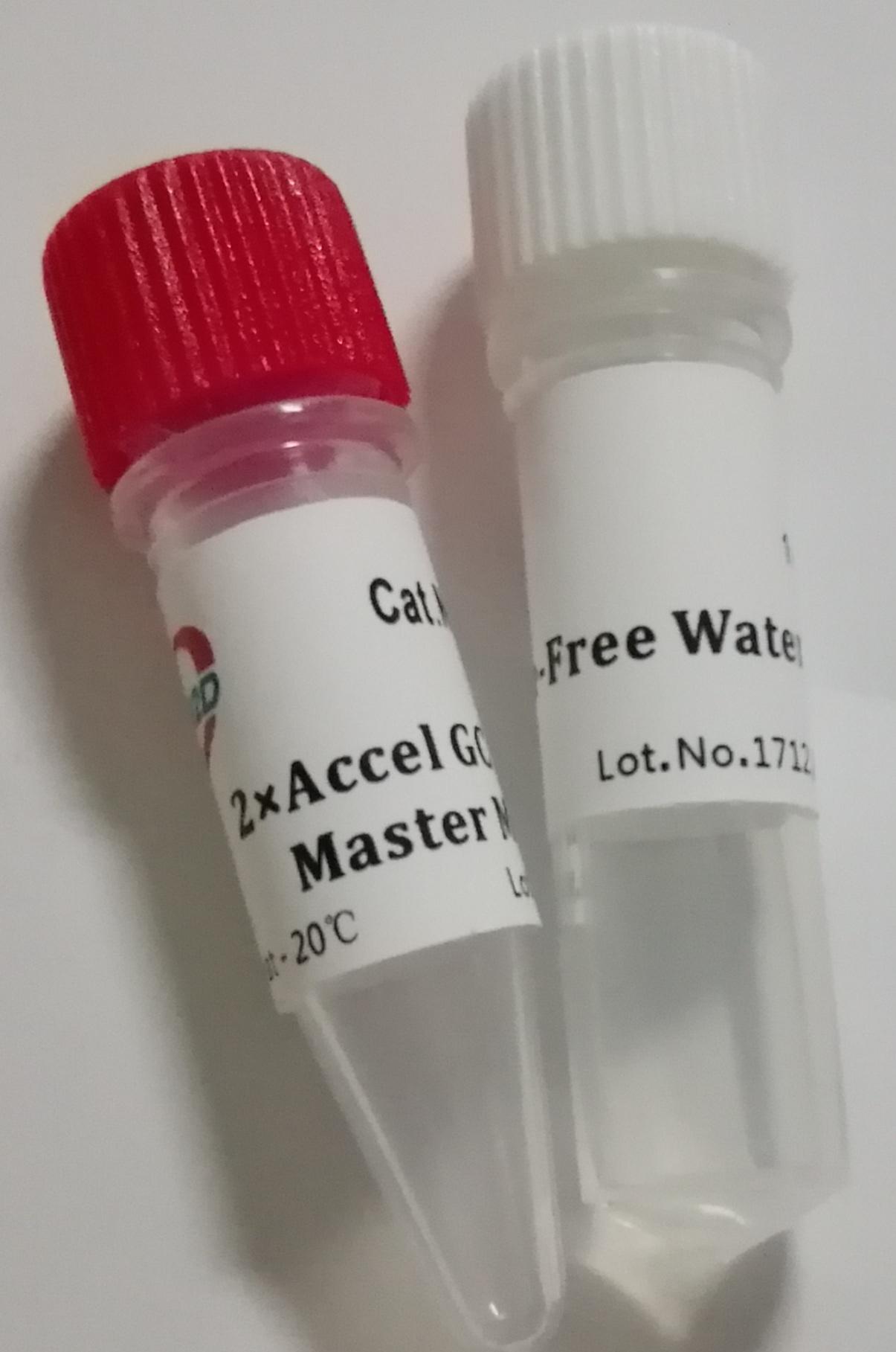最强PCR:2× Accel HF PCR Master Mix