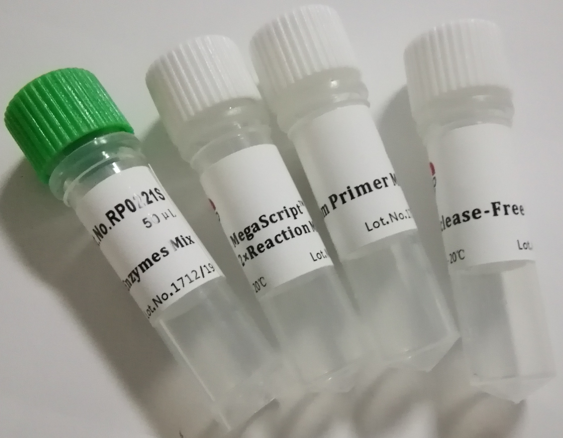 高质量逆转录:MegaScriptTM X First Strand cDNA Synthesis Kit