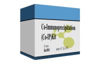 Co-IP试剂盒