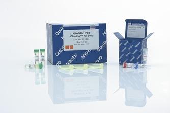 EndoFree Plasmid Giga Kit (5) 货号12391