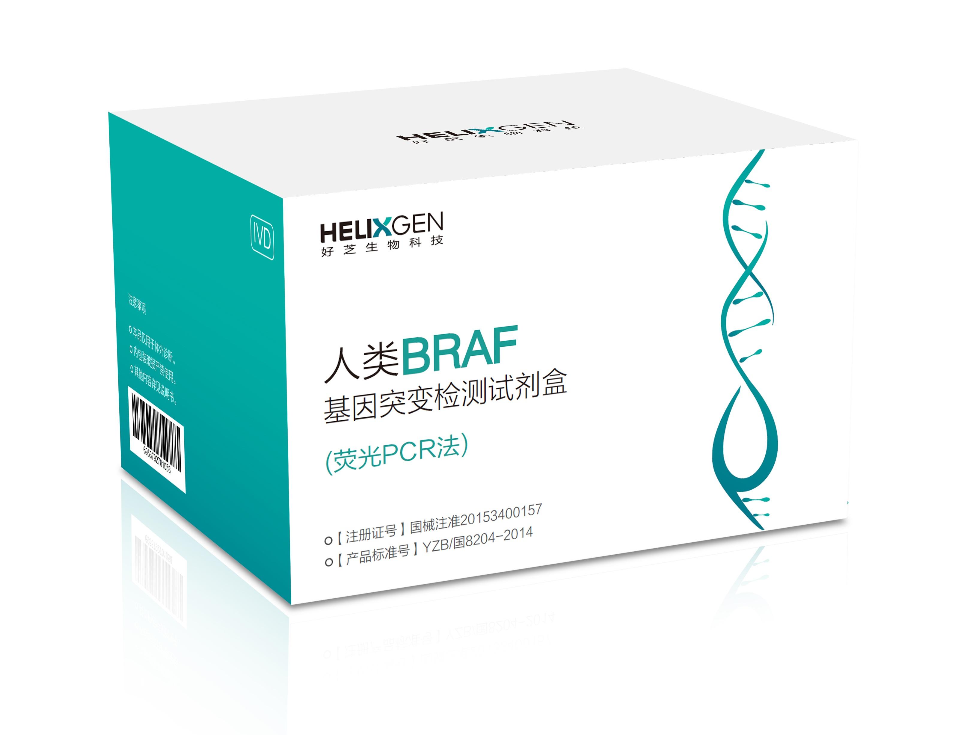 人类BRAF基因突变检测试剂盒(荧光PCR法)