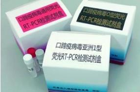 弓形虫病毒抗体检测试剂盒