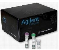 磺胺喹噁啉快速检测试剂盒