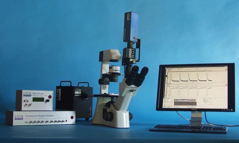 心肌细胞收缩与离子浓度测定系统
