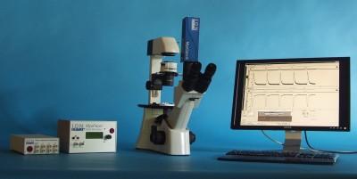 单细胞张力测定系统