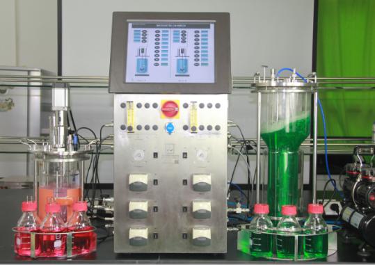 Btype×2 搅拌+气升式双联平行发酵罐