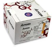 雌三醇试剂盒