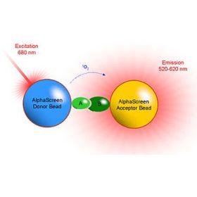PerkinElmer AlphaScreen 高通量药物筛选试剂