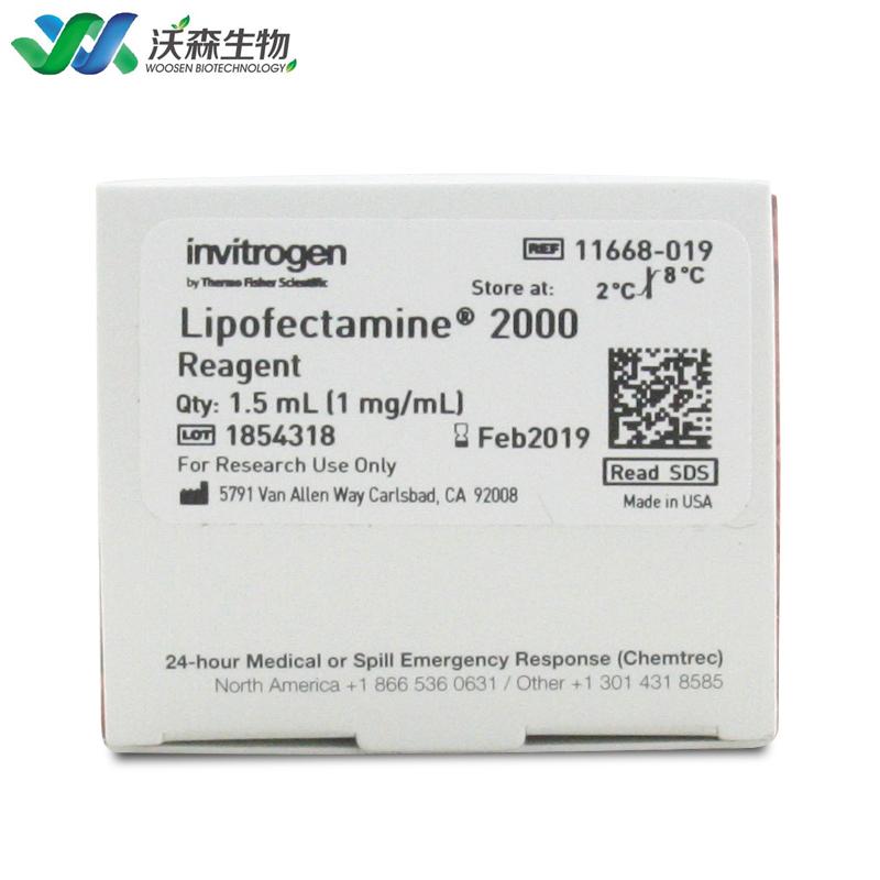 Invitrogen LIPO2000脂质体2000 转染试剂原装11668-027 0.75ml