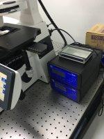 ibidi镜载活细胞培养系统