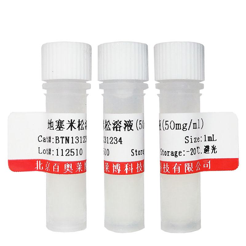 β-Catenin/TCF凝胶迁移突变探针(10μM)