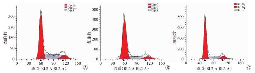 流式细胞术检测细胞周期