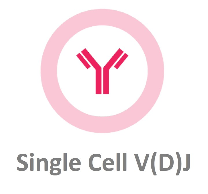 10x Genomics Chromium单细胞免疫谱测序