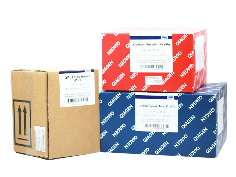 QIAGEN 货号74903 RNeasy Plant Mini Kit (20)