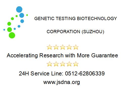 STR细胞鉴定服务
