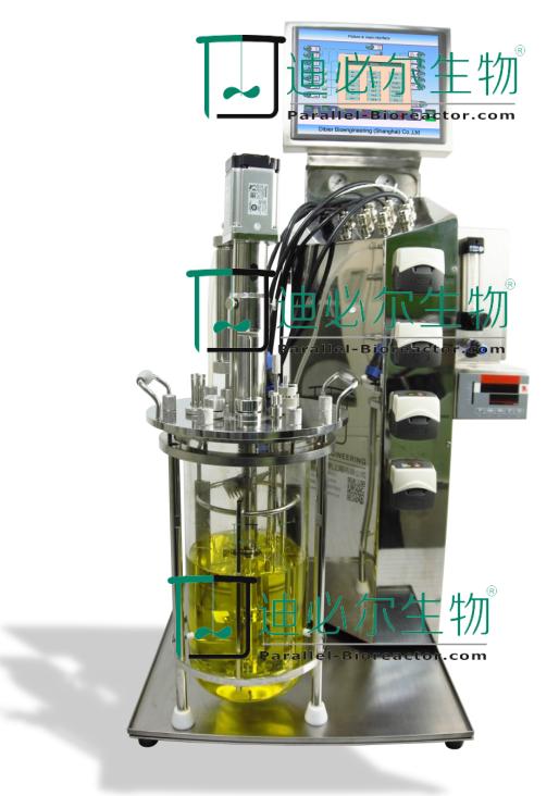 T&J-Atype台式玻璃生物反应器/发酵罐