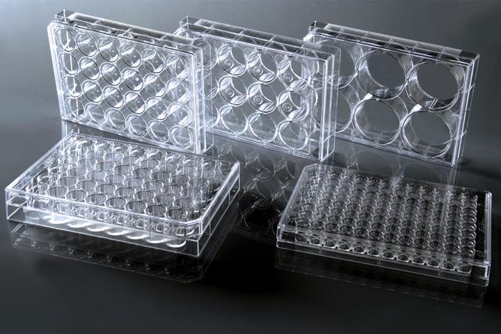 NEST 6孔细胞培养板 TC 703002