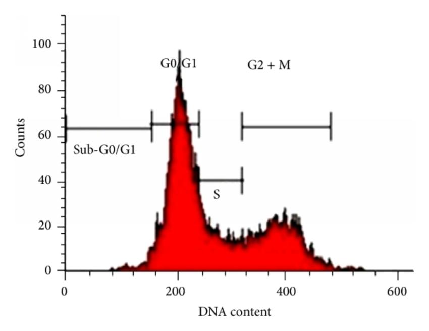 流式细胞术检测细胞周期 碘化丙啶(PI)