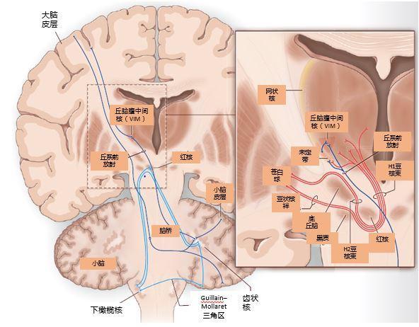 图 1.JPG