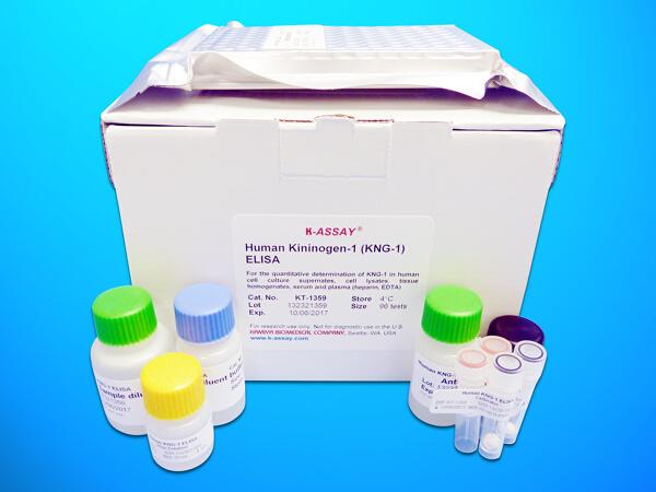 Activin Receptor-Like Kinase 1 (ALK1) ELISA Kit (ACVRL1), Human
