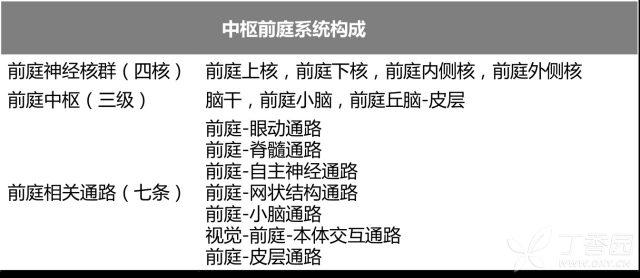 中枢前庭系统构成.png