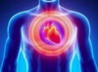 心血管类型疾病模型