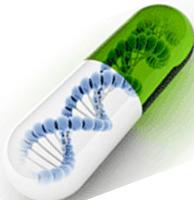 慢病毒过表达cDNA技术服务