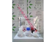 登革病毒NS1抗原检测试剂盒(胶体金法)