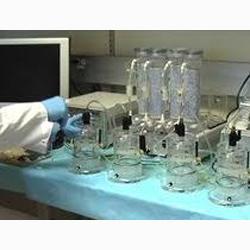 WBP 动物无创肺功能呼吸检测系统