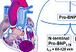 心源性脑栓塞,除了房颤还要注意这个指标