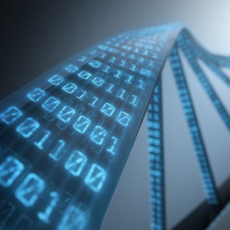 法庭科学DNA研究方案