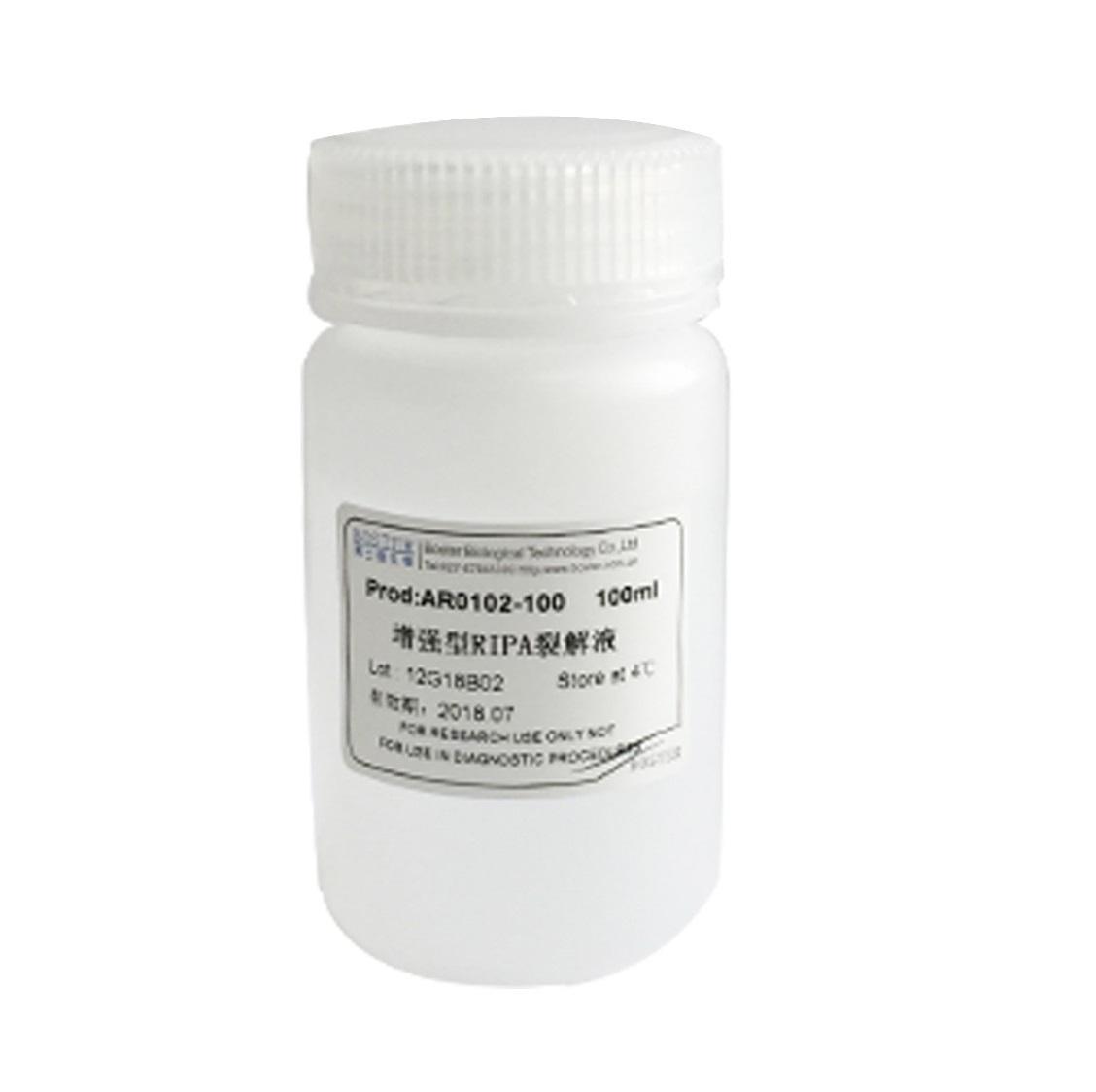 增强型RIPA裂解液