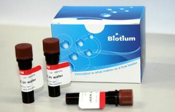 GelRed 核酸凝胶染料试剂/EB替代品 美国 Biotium